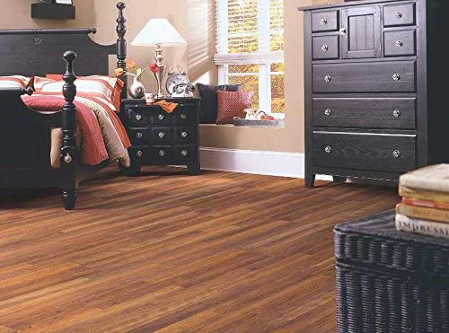Shaw Floors Natural Values Ii Plus 8 Mm Laminate In Kings Canyon