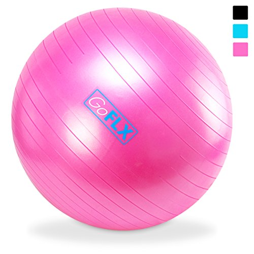 Exercise GoFLX%C2%AE Birthing Stability Swiss
