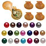 20PC Akoya Oysters with Pearls Inside, Saltwater Cultured Love Wish Round Red Pearl Oyster with Mixed Color (7-8mm)