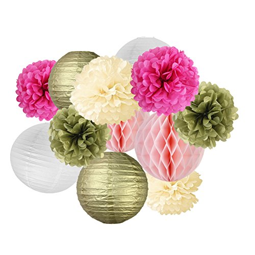 SUNBEAUTY Tissue Paper Pom Pom Flowers Paper Lanterns Wedding Birthday Party Decorations 12pcs Paper Lantern Party Decoration