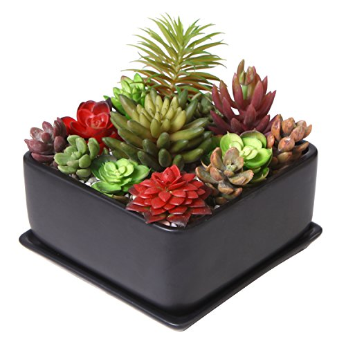 - Modern 7 inch Square Ceramic Succulent Planter Pot with Drainage Tray, Window Box & Saucer, Matte Black