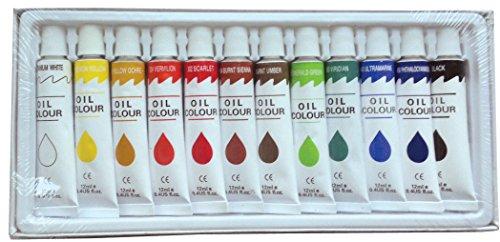12-pc-oil-paints-set-professional-artist-painting-pigment-12ml-tubes