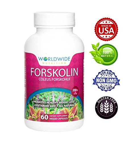 Worldwide Nutrition Pure Forskolin Extract for Weight Loss, 20% Standardized, 60 Veggie Capsules by World Wide Nutrition