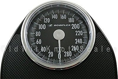 Taylor 300 Scale,