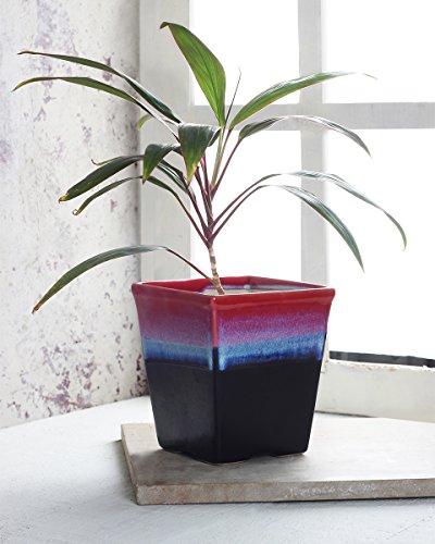 Store Indya Ceramic Planters Pots, Indoor & Outdoor Home Garden Planters & Container Accessories Flower Pots (Red & Black)