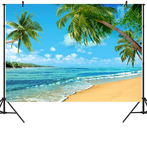 DULUDA 9X6FT Summer Sunshine Luau Tropical Paradise Beach Backdrop Birthday Hawaii Blue Sky Seaside Island Palm Tree Party Background Decor Holiday Trip Vacation Photobooth Studio Props FS27B -