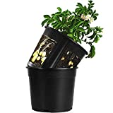 Garden Planter Pot 2-Piece Plastic Container for Growing Vegetables: Tomato,Potato,Carrot,Onion,Peanut (Black)