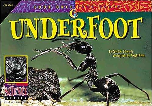 Underfoot (Look Once, Look Again)