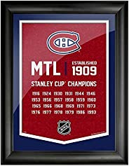 Montreal Canadiens 12x16 Team Empire Framed Artwork