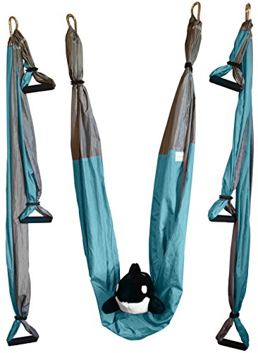 Aerial Yoga Swing Gym Strength Antigravity Yoga Hammock Inversion Trapeze Sling Exercise Equipment with Two Extender Hanging Straps Blue Pink Grey Swings & Beginner Instructions