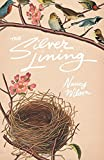 The Silver Lining: A Practical Guide for Christian Grandmothers
