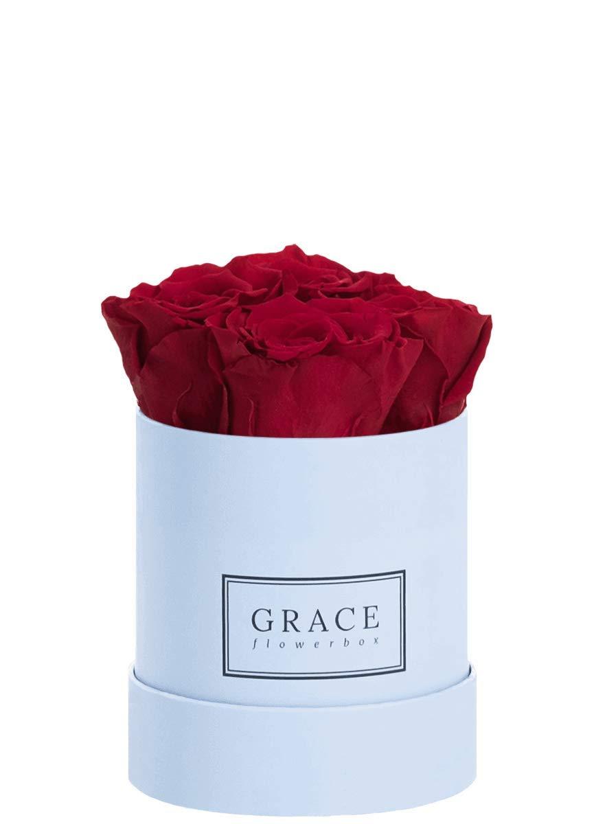 1-3 Jahre haltbare Infinity Rosen Bekannt aus Die H/öhle der L/öwen Blau Baby Flowerbox BURGUNDY 4 echte konservierte Rosen GRACE Flowerbox