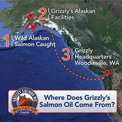 Grizzly Salmon Oil Omega-3 Fatty Acids All-Natural Dog Food