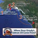 Grizzly Wild Alaskan Salmon Oil Dog Food Supplement Omega 3 Fatty Acids, 16 oz