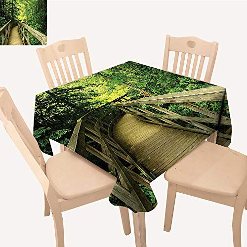 (UHOO2018 Fitted Polyester Tablecloth   Park Summertime Scenic View Envir Ment Holidays Adventure Scene Square/Rectangle Washable for Tablecloth,50x)