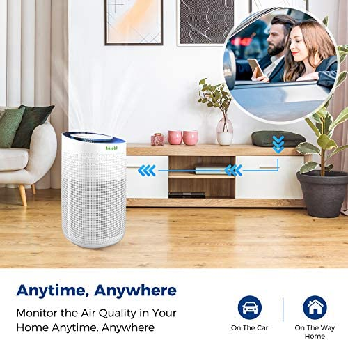 Amrobt Smart Wi-Fi Air Purifier for Home Large Room with True HEPA Filter.4-layer Filtration, Odor Eliminator for Allergies and Pets, Ionic & Sterilizer, Air Cleaner for Office & Home, Rid of Mold, Smoke, Odor. Works with Alexa 51GiWyxMjKL