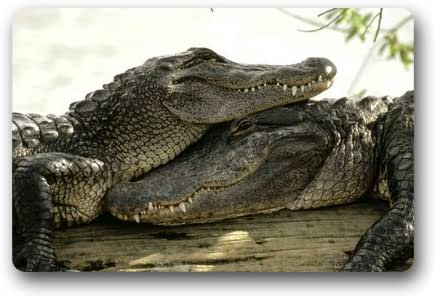 Crocodile Background Doormat/Gate Pad for outdoor,indoor,bathroom use!23.6inch(L) x 15.7inch(W)