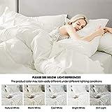 Bedsure Ivory Queen Size Comforter Sets - Cream