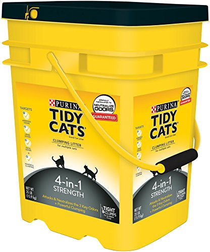 tidy cat litter purina tidy cats 4 in 1 strength clumping cat litter 10647