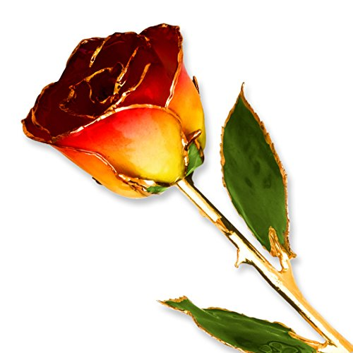 Yellow Red Long Stem Dipped 24K Gold Trim Genuine Rose in Gold Gift Box