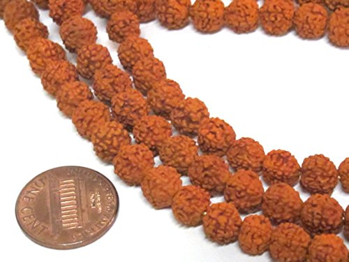 ies - Natural Rudraksha seed beads from Nepal 7 -8 mm -tibetan mala supplies ML088A (Rudraksha Seed)