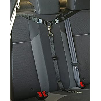 Amazon Com Nober Car Headrest Restraint Harness Tether Leashes For