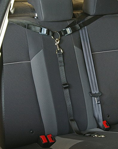Paws 'n' Claws Tangle Free Dog Tether for Vehicle - Attaches Around headrest or Baby car seat Brackets - Adjustable Restraint K9 Lead Sedan Backseat Leash