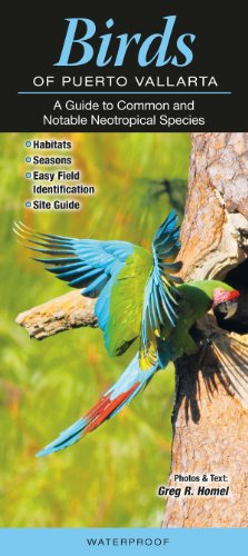 Birds of Puerto Vallarta: A Guide to Common & Notable Neotropical ()
