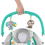 Bright Starts Cradling Bouncer Seat with Vibration