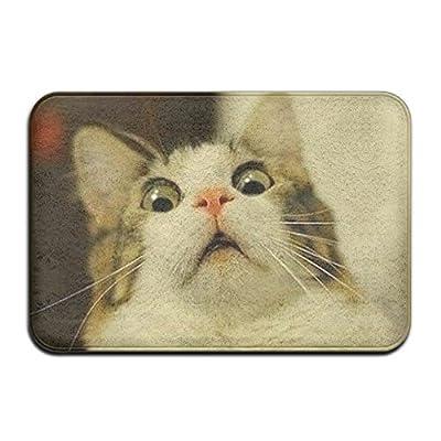 Weird Cat Doormat Entrance Mat Floor Mat Rug Indoor/Outdoor/Front Door/Bathroom Mats Rubber Non Slip