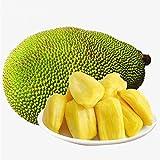 Fresh Whole Jackfruit (One Fruit 5-7 Lbs) (Fresh Whole Jackfruit (One Fruit 12-15 Lbs))