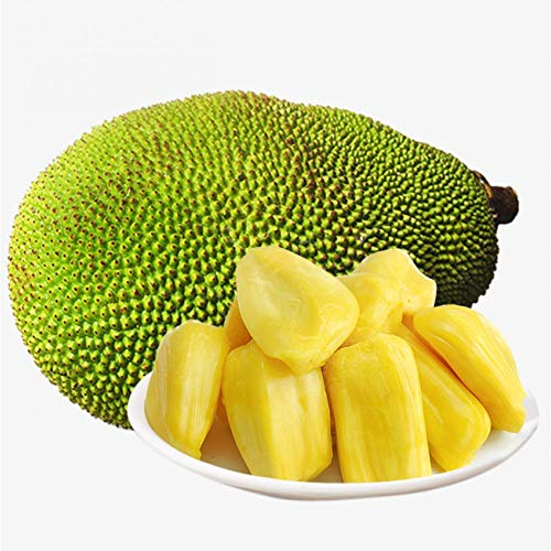 Fresh Whole Jackfruit (One Fruit 5-7 Lbs) (Fresh Whole Jackfruit (One Fruit 8-11 Lbs)) by Tropical Importers (Image #1)