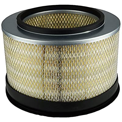 Luber-finer LAF1887 Heavy Duty Air Filter: Automotive