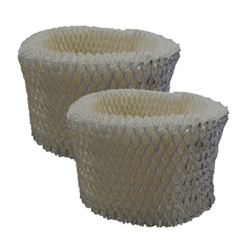 Air Filter Factory 2 Pack Compatible Humidifier Wick Filters For Holmes H75-C by Air Filter Factory