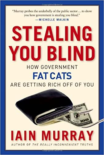 Amazon com: Stealing You Blind: How Government Fat Cats Are