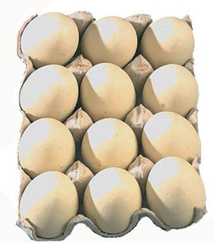 Dozen Wooden Chicken Faux Fake Eggs Kitchen Decor Beige by Creative by Creative Co-op (Chicken Coop Decorations compare prices)