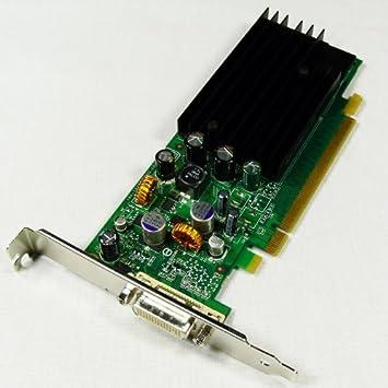 Amazon.com: PNY vcq285nvs-pciex1-pb NVIDIA Quadro NVS 285 ...
