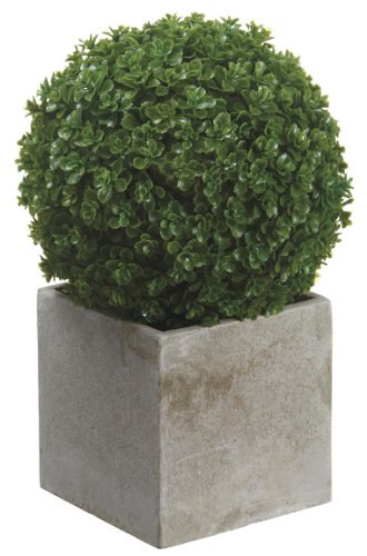 Artificial 9-inch Green Baby's Tear Ball Topiary in Paper Mache Pot