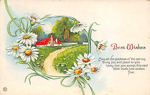 Best Wishes Postcard unused -