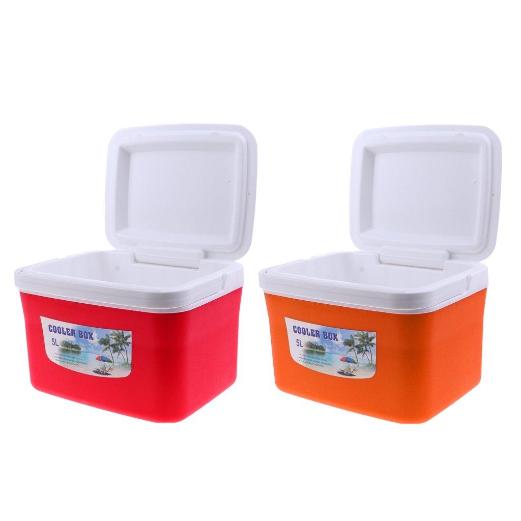 P Prettyia 2 pcs Kühlbox Wärmebox Campingbox mit Griff