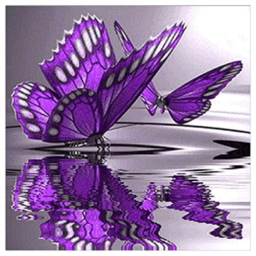 DIY 5D Diamond Painting by Number Kit, Beautiful Butterfly Square Rhinestone Embroidery Cross Stitch Ornaments Arts Craft Supply Wall Decor