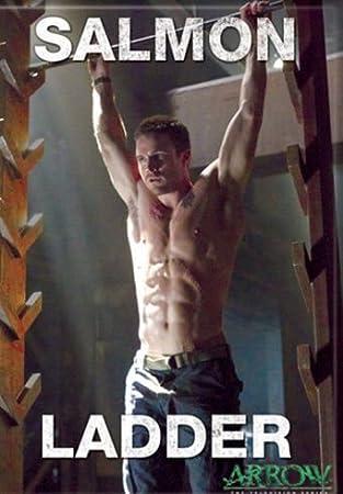 DC Comics Flecha serie de TV Arrow Salmón Escalera Foto Imán para Frigorífico: Amazon.es: Hogar