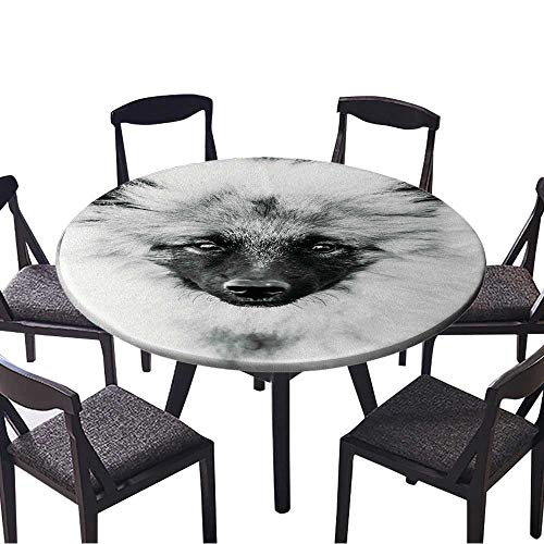 (Round Fitted Tablecloth Gray Keeshound,Keeshond,Keeshonden Dog Wolfspitz Close Up Black and White Portrait for All Occasions 43.5