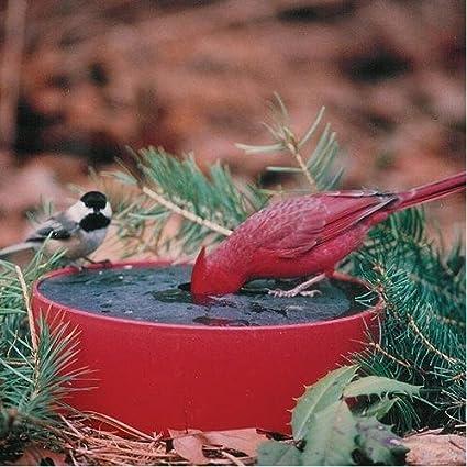 Amazon.com: Sipper calentador de agua solar Estación de aves ...