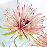 LI-HUA-CAT-Artificial-Crabberry-3-Heads-WhiteLight-Bule-Color-Chrysanthemum-Artificial-Flower-Fake-Flower-for-Wedding-Decorating-Flower-Arrangement-Home-School-Shop-DIY-etc-Pink