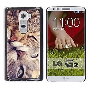 PC/Aluminum Funda Carcasa protectora para LG G2 D800 D802 D802TA D803 VS980 LS980 Cute Cat Friends / JUSTGO PHONE PROTECTOR