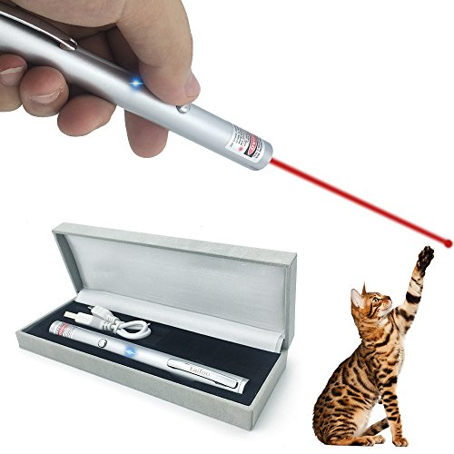 Laifoo USB Rechargeable Cat Toys Interactive LED Light Pointer For Cats Catch Teasing Scratching Training