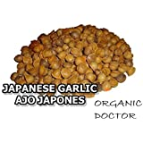 Japanese Garlic//Ajo Japones (100% Natural!!) Choose your count