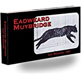 Fliptomania Muybridge Cat Flipbook