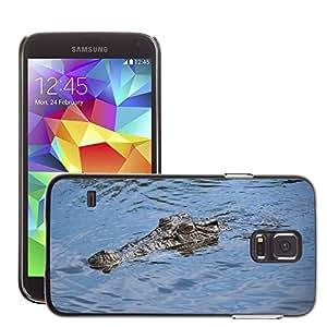 Etui Housse Coque de Protection Cover Rigide pour // M00117223 Cocodrilo río Australia Naturaleza // Samsung Galaxy S5 S V SV i9600 (Not Fits S5 ACTIVE)